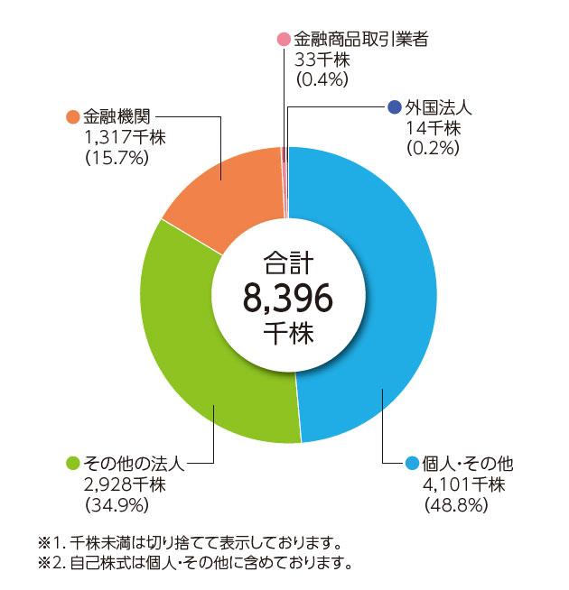 年次報告書株式分布