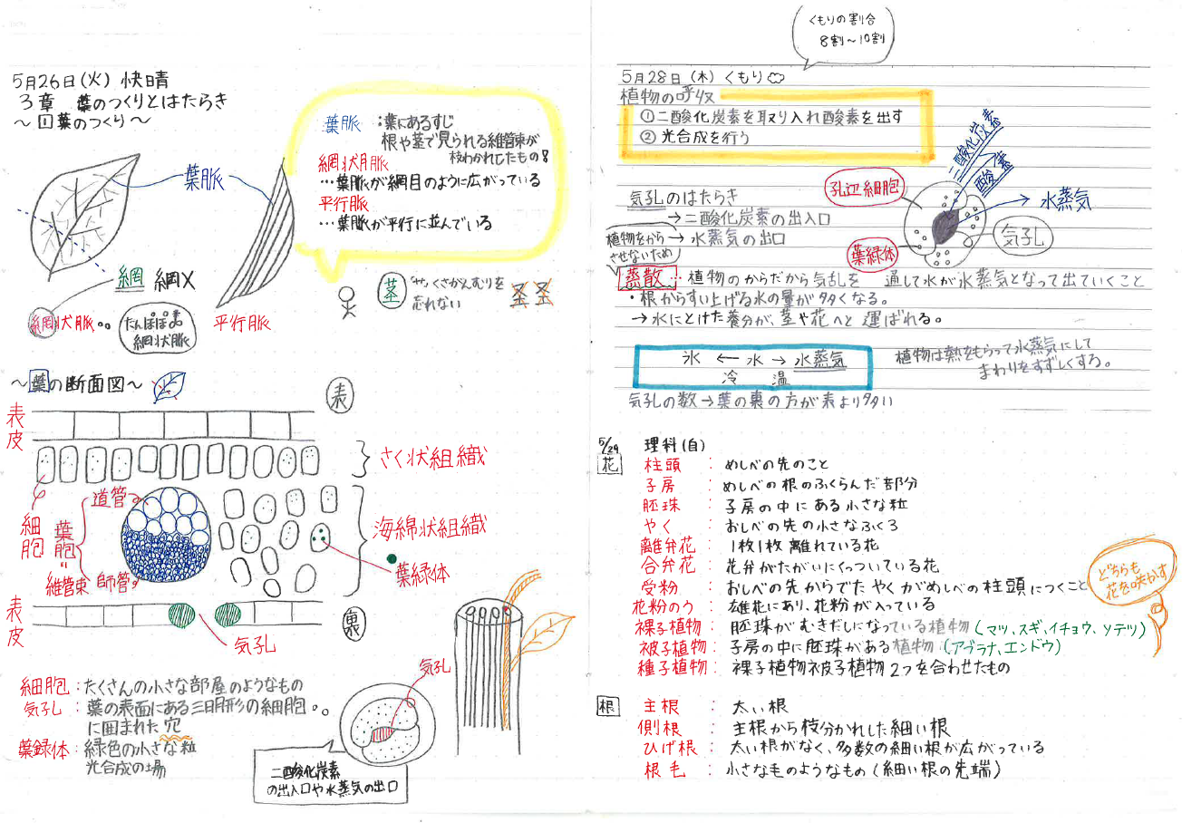 理科ノート